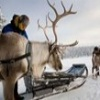 SNP - Winter in Lapland (Groep / Privé)