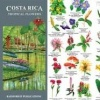 TIP - Costa Rica Field Guides