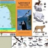 TIP - Field Guides British Columbia