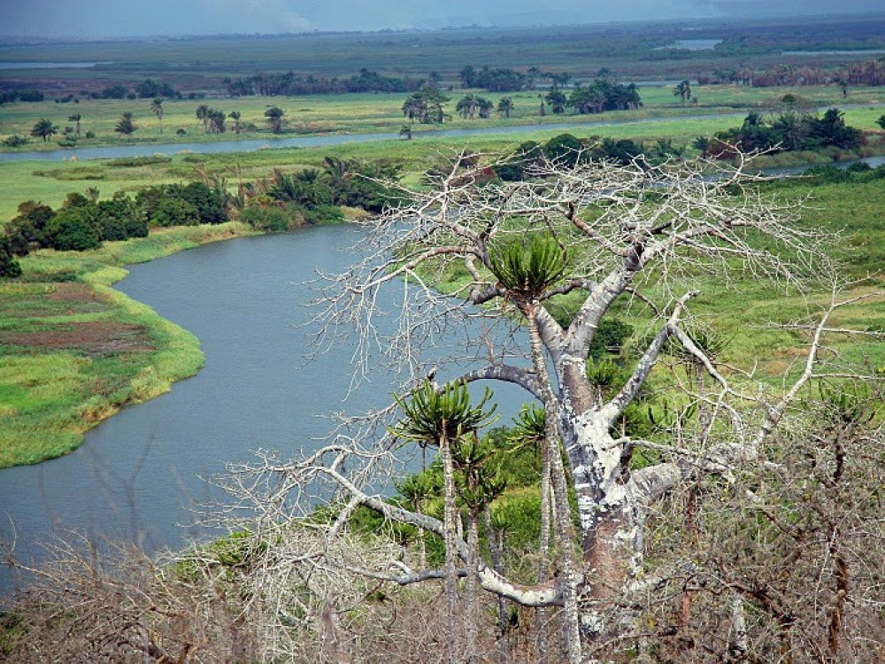 Quicama National Park