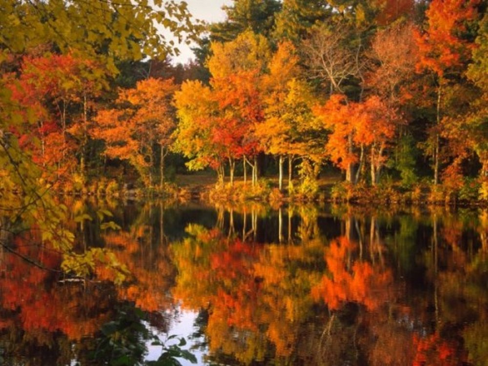Indian Summer - New England