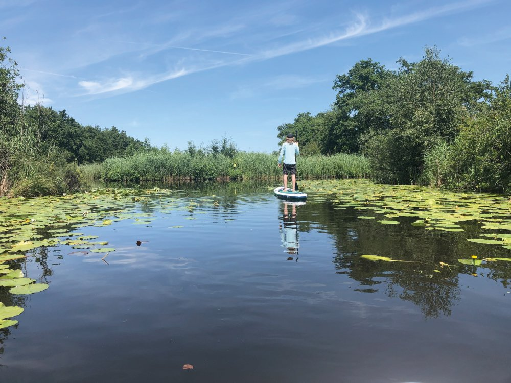 Stand up paddling in Loosdrecht