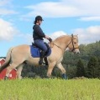 Afbeelding voor Book Horse Riding Holidays