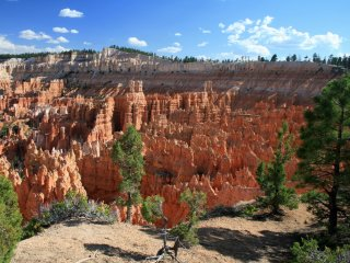 Afbeelding voor Bryce Canyon in Amerika