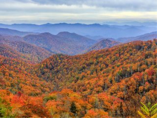 Afbeelding voor Great Smoky Mountains